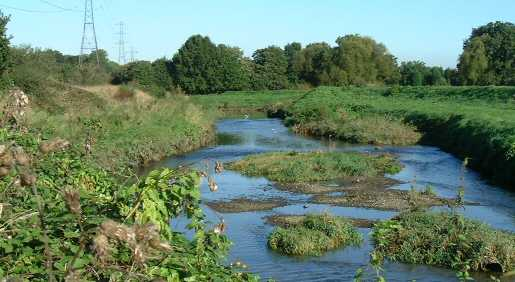 The River Roding by the Sewage Works