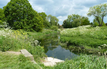 The River Roding, from Aldersbrook Exchange Lands